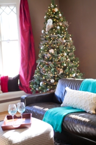 photo of living room and christmas tree